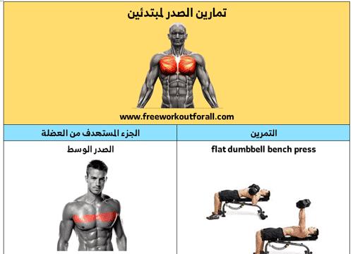 تمارين الصدر بالدمبل