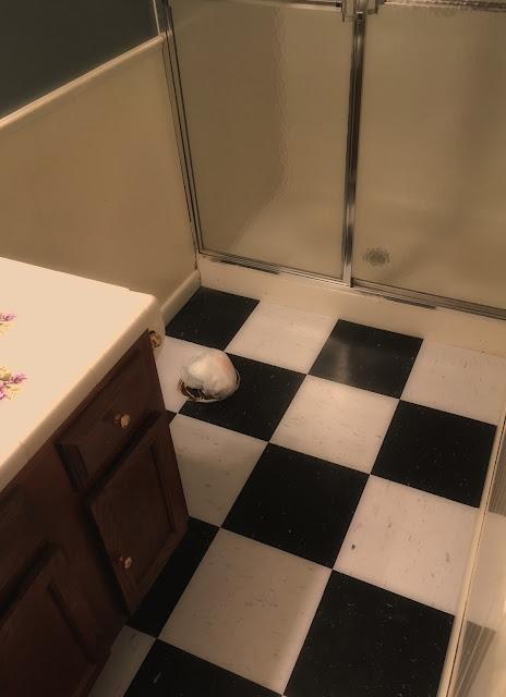 Bathroom Floor Bowing : Life