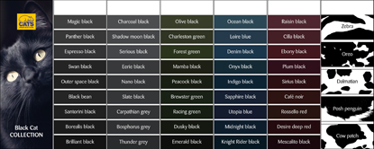 Black Cat Day colour swatches