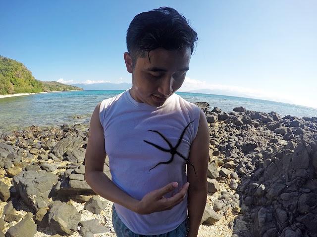 Gello Ganon x Fortalez / Oscar Island