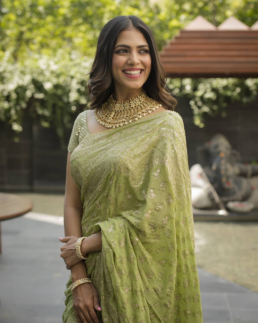 Malavika Mohan  (Indian Actress) Wiki, Age, Height, Family, Career, Awards, and Many More...