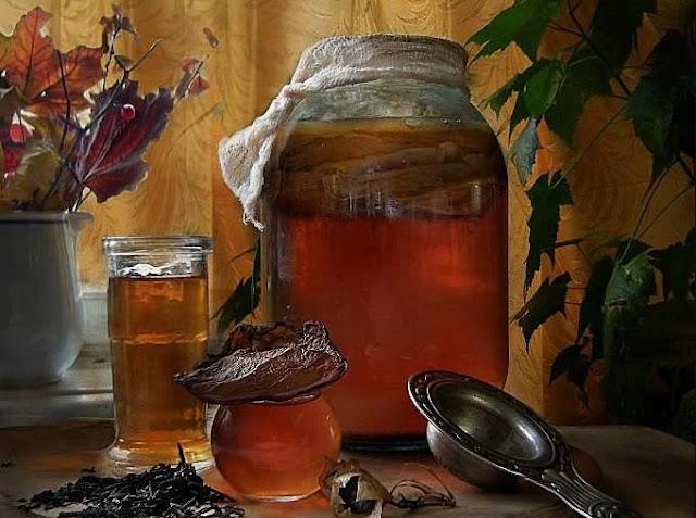 Как вырастить чайный гриб из черного или зеленого чая, из плодов шиповника