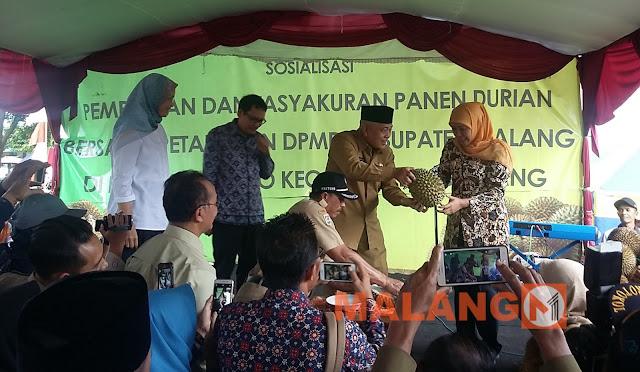 Gubernur Jawa Timur Jadi Tamu Spesial Dalam Giat Gema Desa Di Ngantang