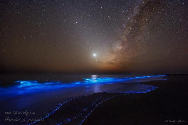 شب روشن آبهای ایران