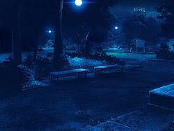 Anime Landscape: Park at night background