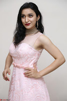 Sakshi Kakkar in beautiful light pink gown at Idem Deyyam music launch ~ Celebrities Exclusive Galleries 033.JPG