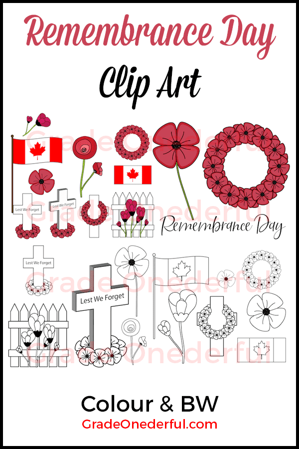 Beautiful Remembrance Day clip art. Perfect for your classroom or teacher products. Includes colour and bw images. #remembranceday #gradeonederfuldesigns #poppies #clipart #poppyclipart