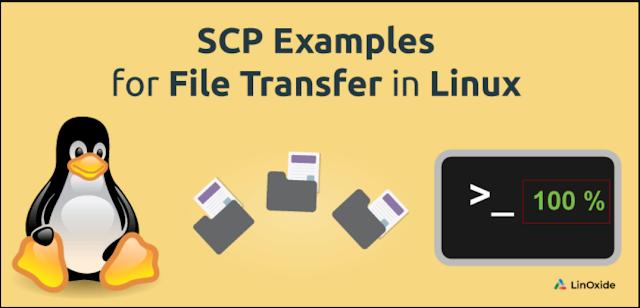 Copy File Antar Server Dengan Perintah scp