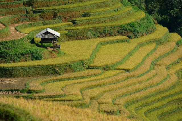 SUGGEST: Perfect plan for holiday in Vietnam this year Autumn