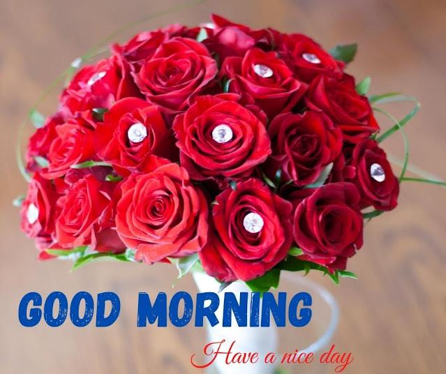 flower images for good morning