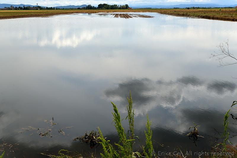 Alluvione BIjeljina