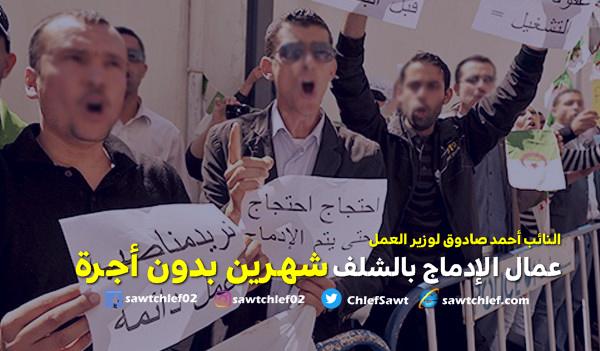 """النائب """"صادوق"""" يراسل وزير العمل بشأن أجور عمال الإدماج  بالشلف"""