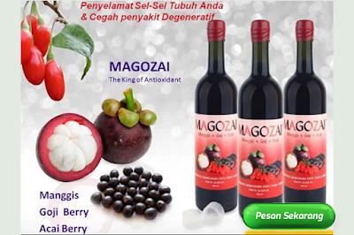 Manfaat Magozai untuk kesehatan tubuh