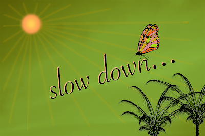 sun shining with butterfly flitting around - slow down