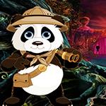 Play Games4King - G4K Safari Panda Escape Game