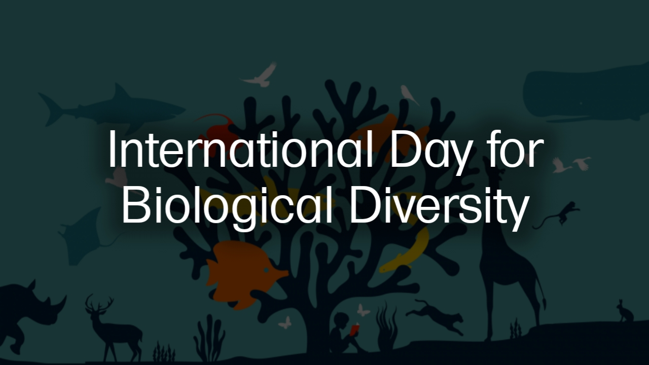 biological diversity tamil