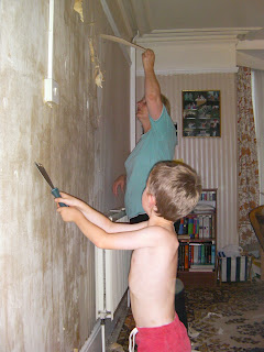 wallpaper stripping