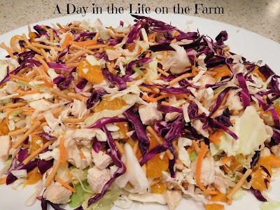 Chicken and Mandarin Orange Salad