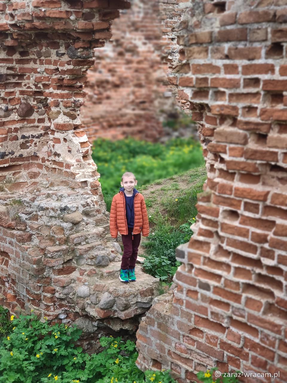 Ruiny zamku Besiekiery