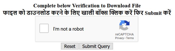 google input tools verification box