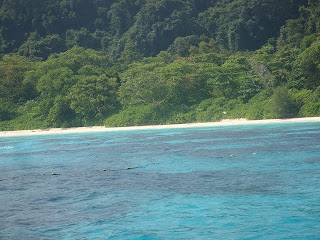 Snorkling at  Koh Tachai Island