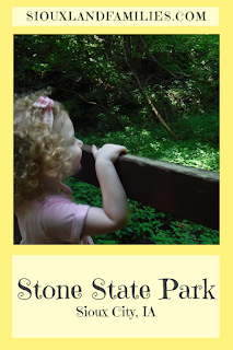 a small girl with curly blonde hair and a pink headband holds the top rail of an old metal bridge while gazing at the woodland view at Stone State Park