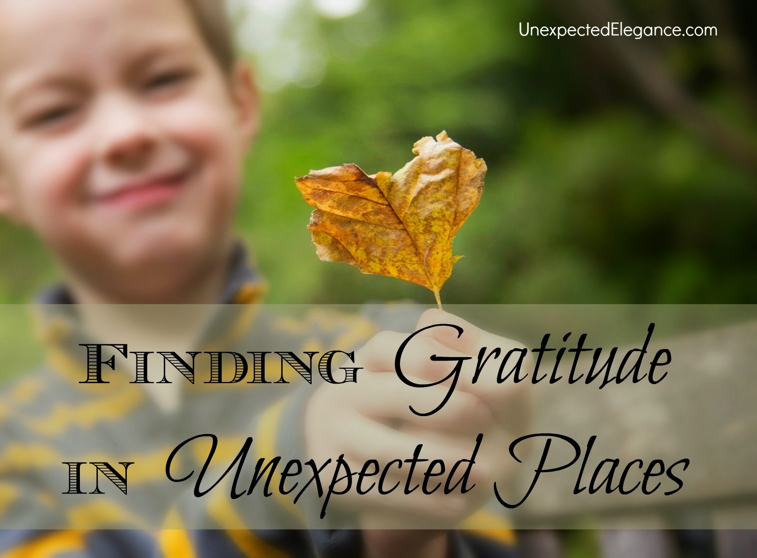 Take a look into scripture on finding gratitude in unexpected places.