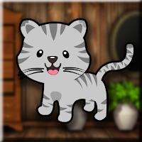 Games2Jolly Tabby Cat Esc…