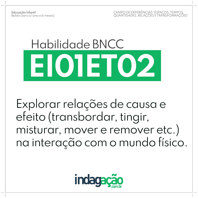 Habilidade EI01ET02 BNCC