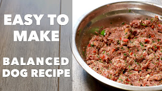How to Make healthy Homemade Dog Food Recipes Your Dog Will Love