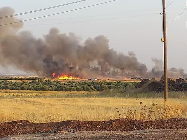 16917 دونماً مساحات الأراضي المتضررة جراء الحرائق في السويداء