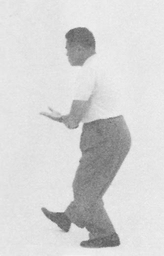 Tai Chi Chuan (Square Form) 21. Grasping The Bird's Tail