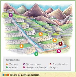 Aprenda Historia De La Humanidad La Agricultura De Las