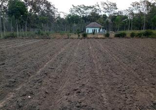 lahan Malang