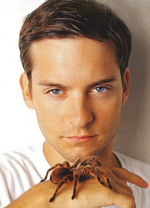 Matt Damon Fan Club: Tobey Maguire Wallpapers and ...