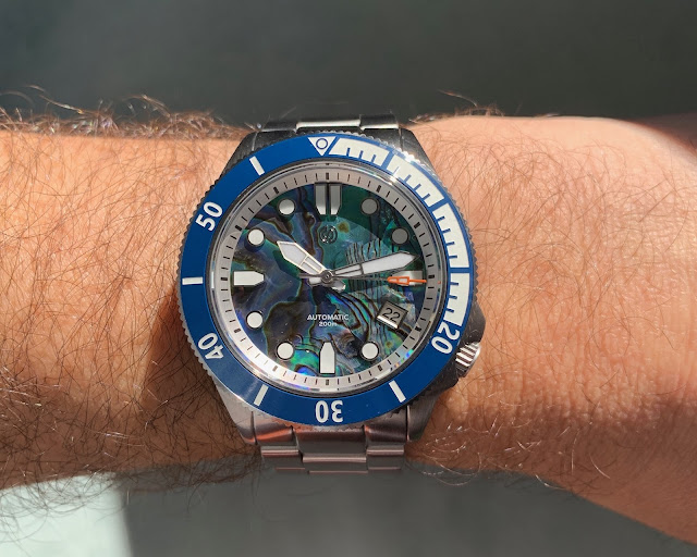 Signum Cuda abalone 44mm wrist shot