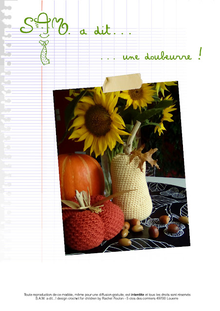 https://www.ravelry.com/dls/sam-a-dit-design-crochet-for-children-by-rachel-foulon/420095?filename=S.A.M._a_dit..._une_doubeurre_ou_butternut_.pdf