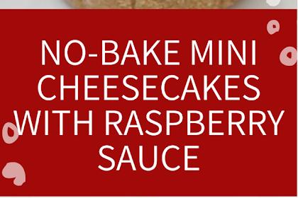 No-bake Mini Cheesecakes with Raspberry Sauce