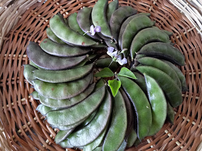 Stuffed hyacinth bean fritters