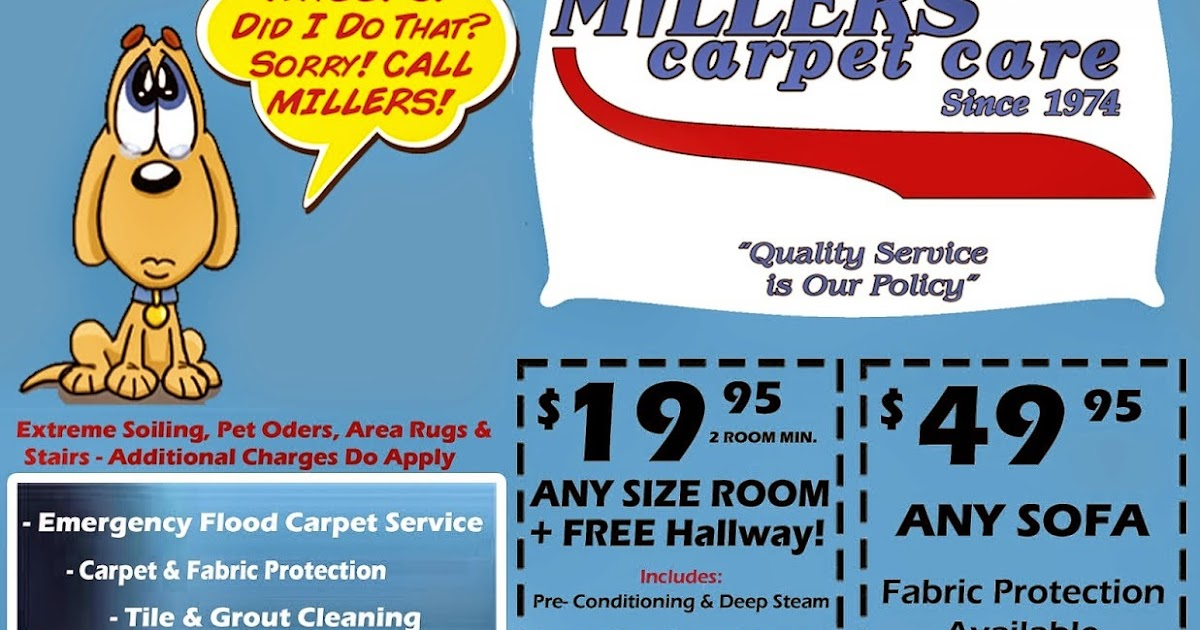 miller carpet care  Floor Matttroy
