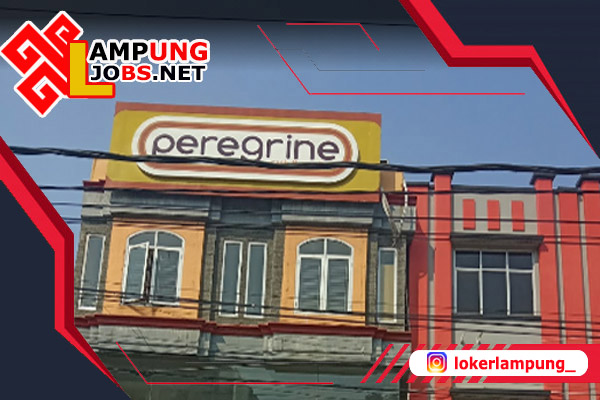 Lowongan Kerja Lampung Terbaru Di Pt Peregrine Lampung 2021 Jobs Lampung Loker Lampung 2021