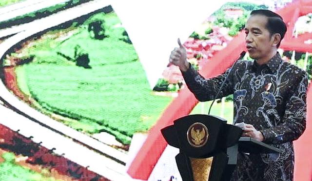 Usai Gusur Lahan Rakyat, Kini Jokowi Minta Program Cetak Sawah Besar-besaran, Mau Ngapain?