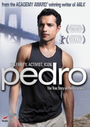 VER ONLINE Y DESCARGAR: PEDRO - PELICULA RECOMENDADA - EEUU - 2008 en PeliculasyCortosGay.com