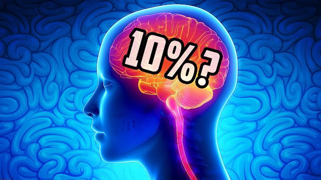 Apakah Kita Menggunakan 100% Dari Otak Kita?