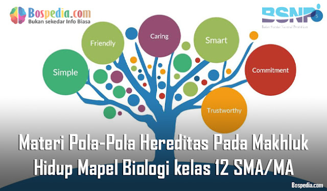 Materi Pola-Pola Hereditas Pada Makhluk Hidup Mapel Biologi kelas 12 SMA/MA