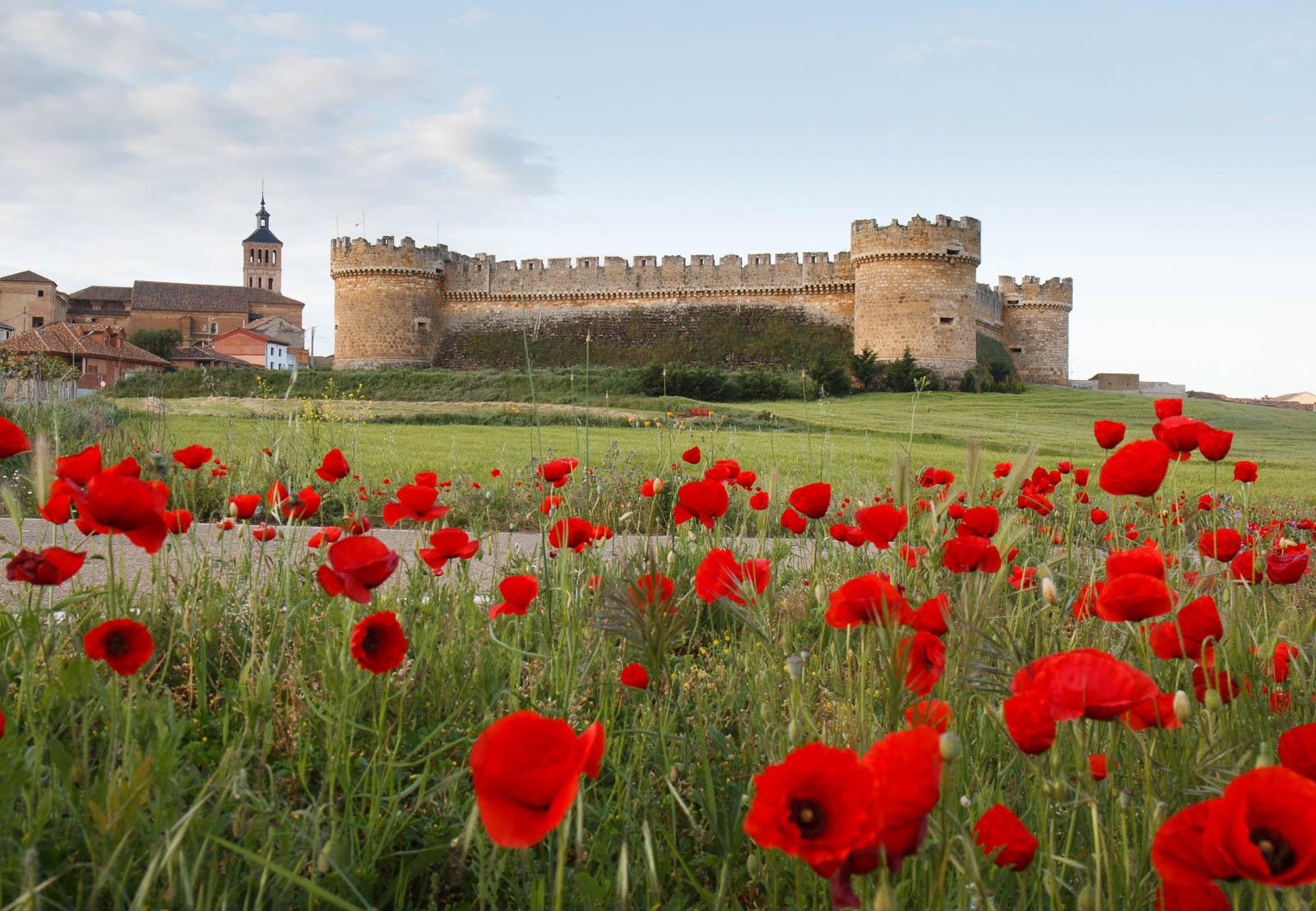 El desaf o castillo de grajal de campos palencia 27 for Puerta 7 campo de mayo