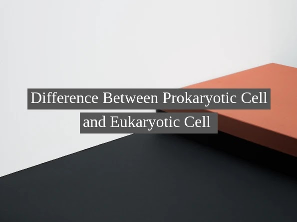 Difference Between Prokaryotic Cell and Eukaryotic Cell
