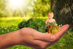 Kebutuhan gizi anak yang perlu diketahui