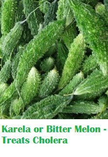 Health Benefits Of Karela or Bitter Melon - Treats Cholera