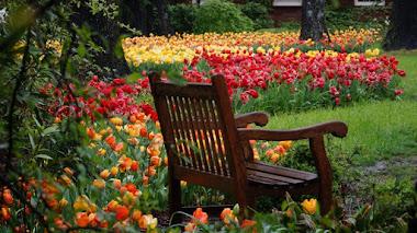 Dixon Gallery and Gardens, un museo con jardines en Menphis
